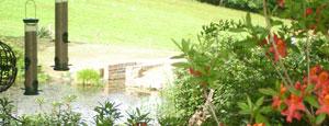 Garden landscaping garden landscapers kent east for Garden pond overflow design